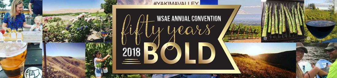 2018 WSAE Annual Convention